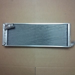 radiator for Van Diemen 98-current- SPECIAL PRICE WHILE SUPPLIES LAST