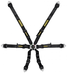 Schroth Flexi 2x2 FIA Harness, 2